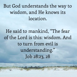 Job 28 verses 23,28