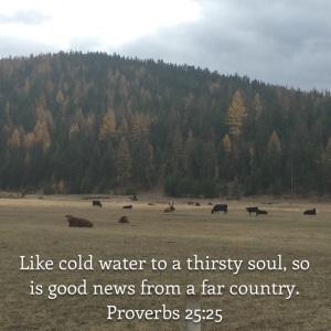 Proverbs 25 verse 25