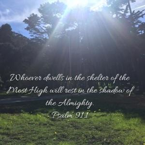 Psalm 91 verse 1