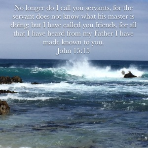 John 15 verse 15