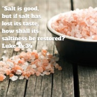 Luke 14 verse 34