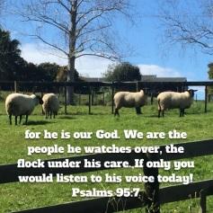psalm-95-verse-7