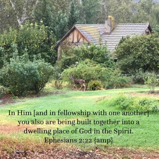 Ephesians 2 verse 22
