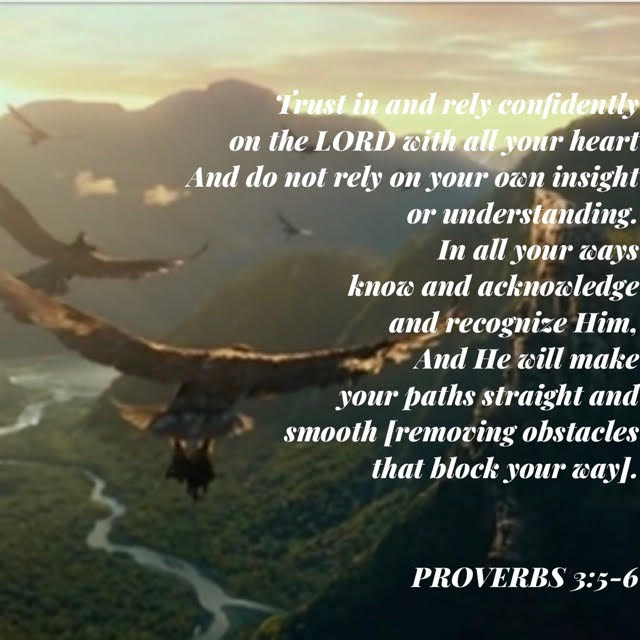 proverbs 3 v 5 and 6 with eagles