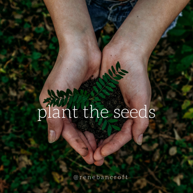 plant the seeds - blog 2-10-20